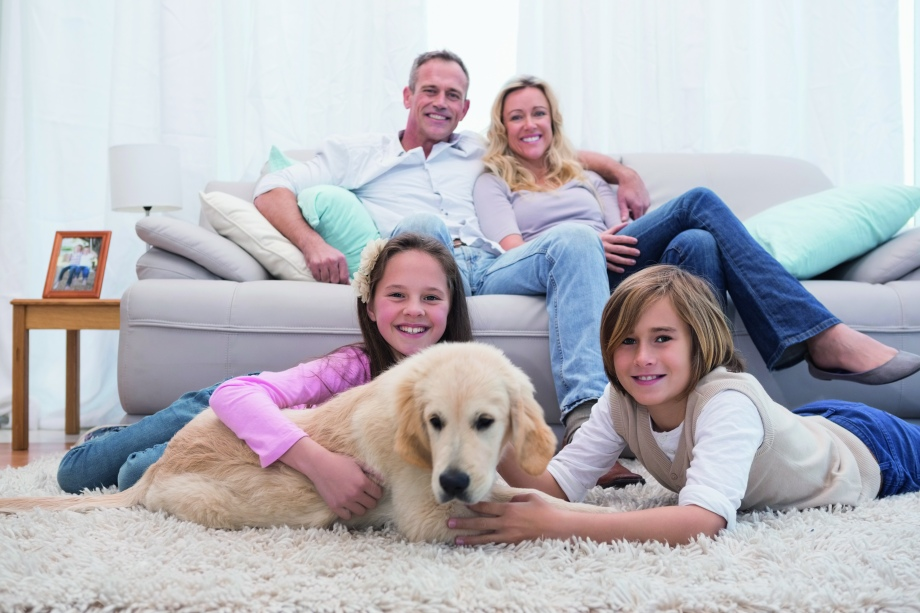 Cute siblings playing with dog with their parent on the sofa at home in the living room